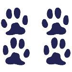 wallstickers med hunde
