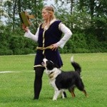 Dog-dancing til store hestedag