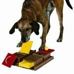 Poker box aktivitetslegetøj til hunde