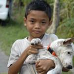 Vaccinationer mod rabies
