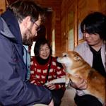 WSPA har oprettet nødcentre i Japan