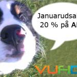 januarudsalg hund