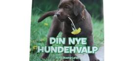 Bogudgivelse: Din nye hundehvalp