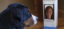 Videochat med din hund