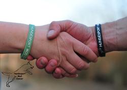 Armbånd hundesport mod cancer