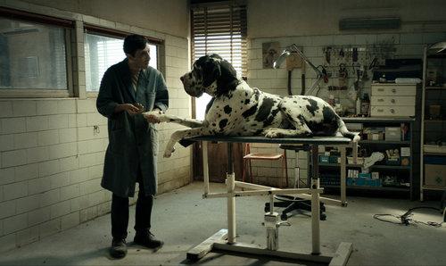 Danmarkspremiere: Dogman