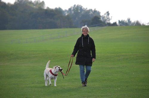 Sandsynligheden for at dyrke nok motion er fire gange større hos hundeejere end hos folk uden hund